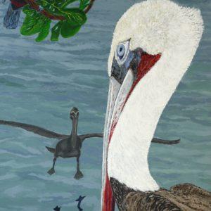 Toekan met pelikanen, 2008